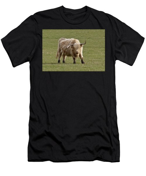 Sauvie Island Cow Men's T-Shirt (Athletic Fit)
