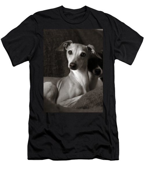 Say What Italian Greyhound Men's T-Shirt (Athletic Fit)