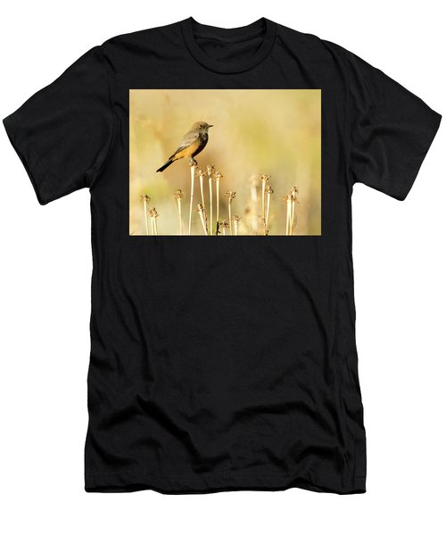 Say's Phoebe Men's T-Shirt (Athletic Fit)