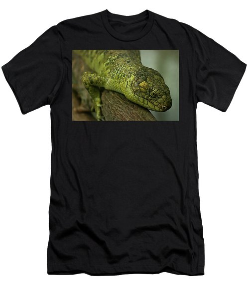 Scales Of The Hunter Men's T-Shirt (Athletic Fit)