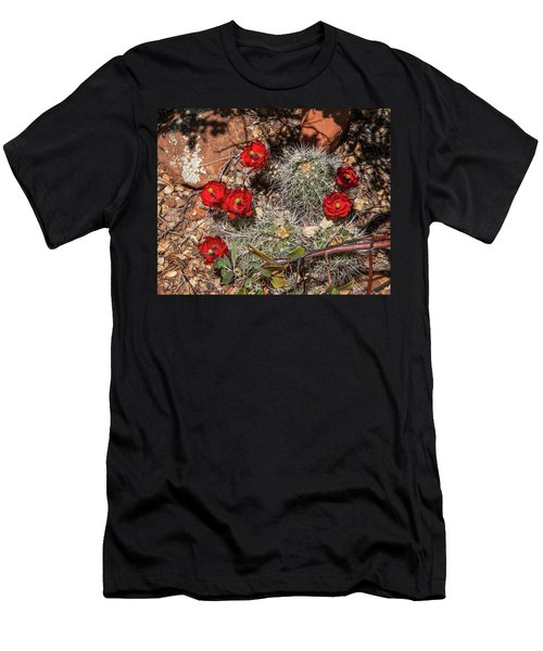 Scarlet Cactus Blooms Men's T-Shirt (Athletic Fit)