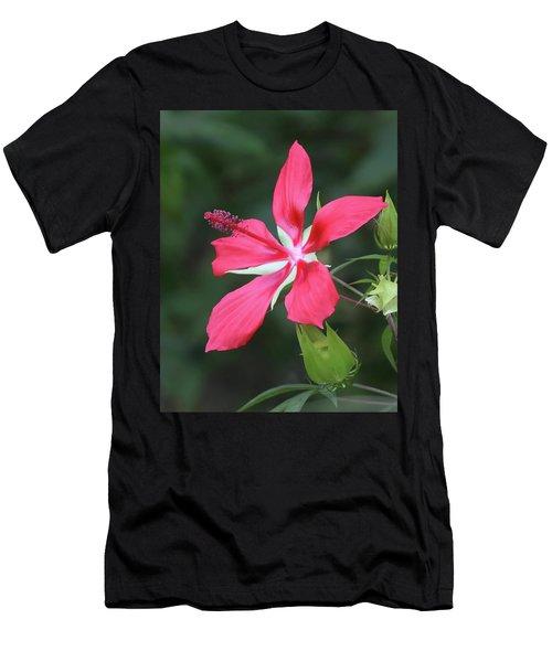 Scarlet Hibiscus #4 Men's T-Shirt (Athletic Fit)