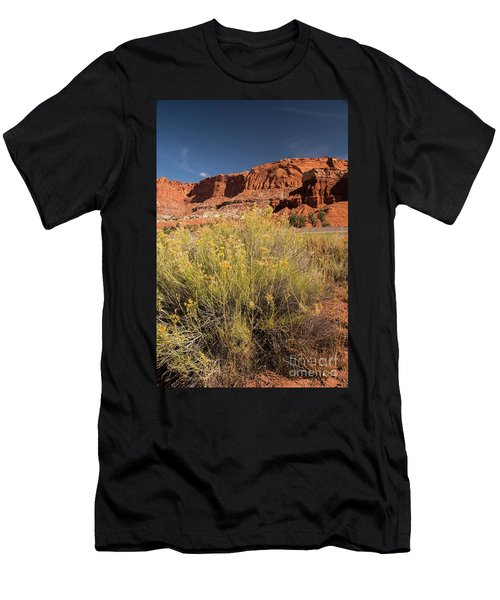 Scenery Capital Reef National Park Men's T-Shirt (Athletic Fit)
