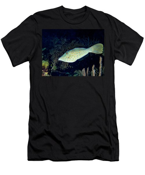 Men's T-Shirt (Slim Fit) featuring the photograph Scrawled Filefish by Jean Noren