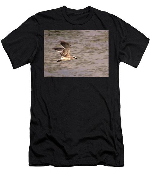 Seagull Flight Men's T-Shirt (Athletic Fit)