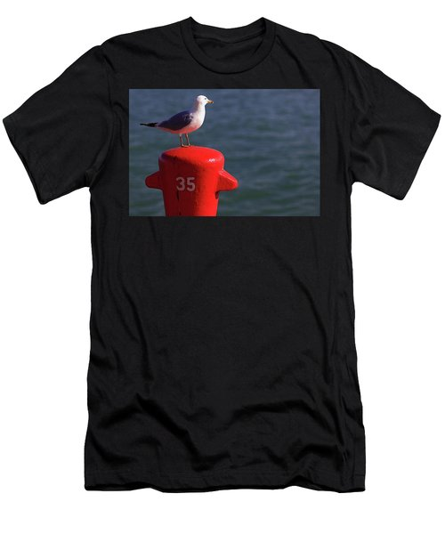 Seagull Number 35 Men's T-Shirt (Athletic Fit)