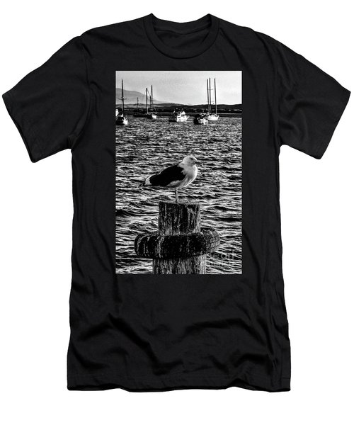 Seagull Perch, Black And White Men's T-Shirt (Athletic Fit)