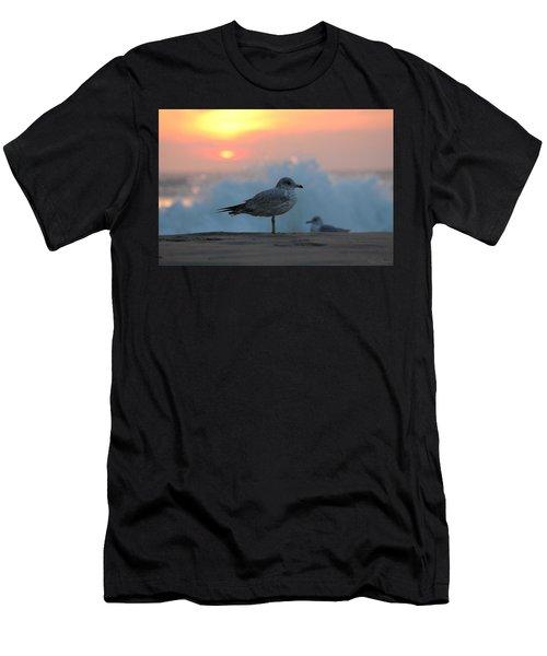 Seagull Seascape Sunrise Men's T-Shirt (Athletic Fit)