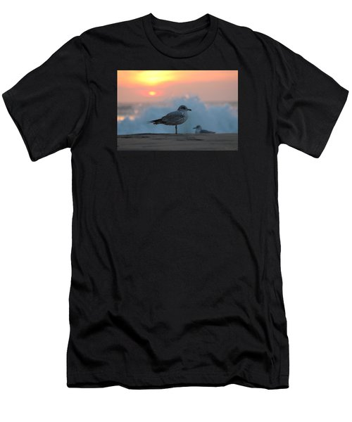 Seagull Seascape Sunrise Men's T-Shirt (Athletic Fit)