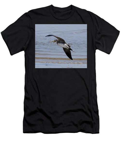 Seagull With Shrimp Men's T-Shirt (Athletic Fit)