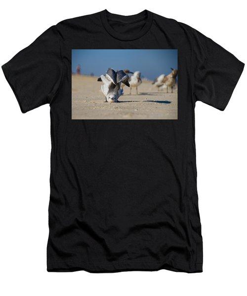 Seagull Yoga Men's T-Shirt (Athletic Fit)