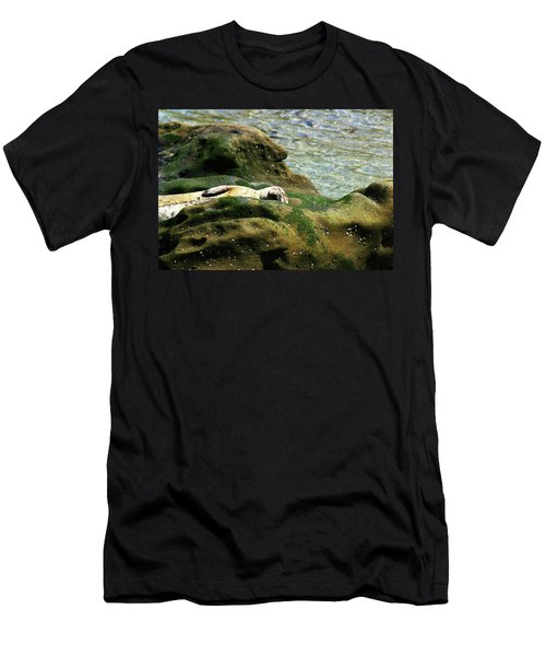 Men's T-Shirt (Slim Fit) featuring the photograph Seal On The Rocks by Anthony Jones