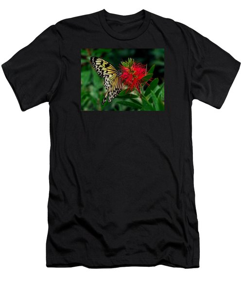 Searching For Nectar Men's T-Shirt (Athletic Fit)