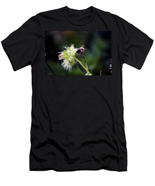 Searching For Pollen Men's T-Shirt (Athletic Fit)