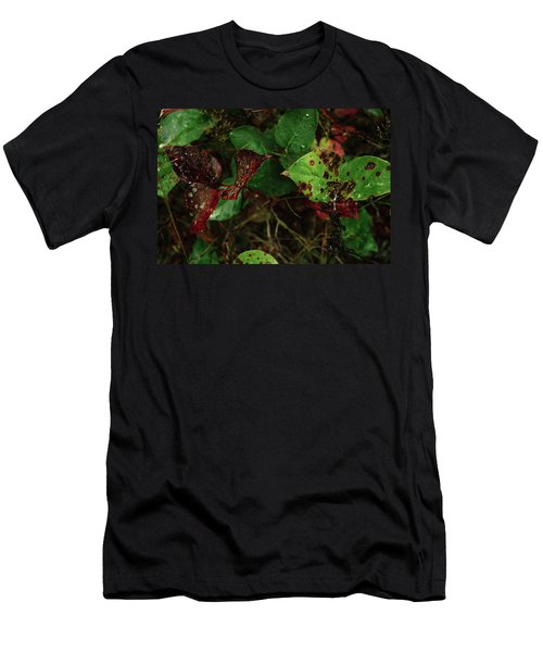 Season Color Men's T-Shirt (Athletic Fit)