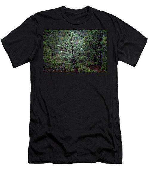 Sedona Tree #1 Men's T-Shirt (Athletic Fit)