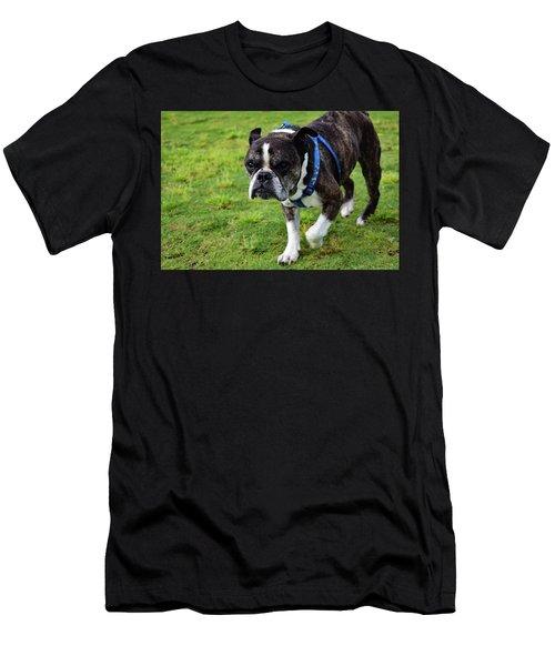 Leroy The Senior Bulldog Men's T-Shirt (Athletic Fit)