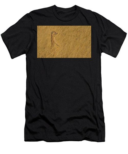 Sentinel Men's T-Shirt (Athletic Fit)