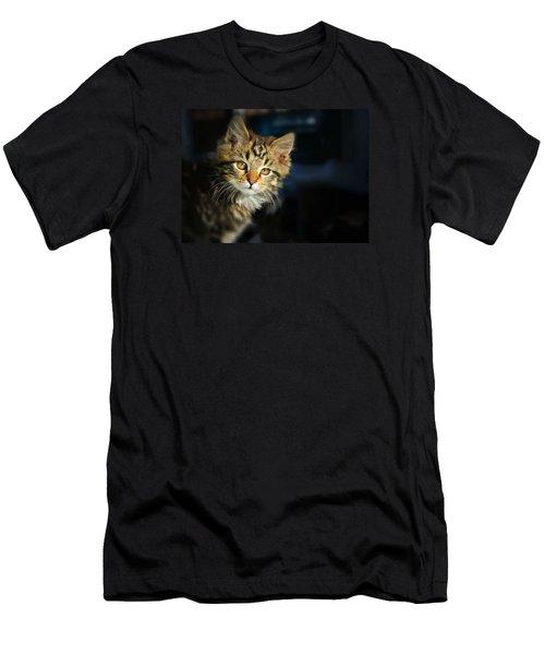 Serious Cat Portrait Men's T-Shirt (Athletic Fit)