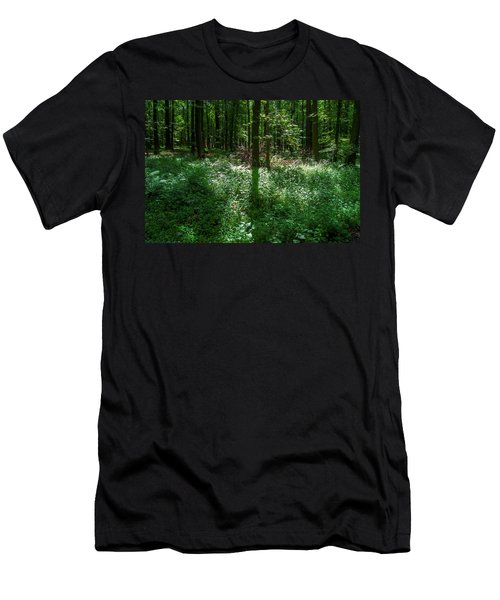 Shadow And Light In A Forest Men's T-Shirt (Athletic Fit)