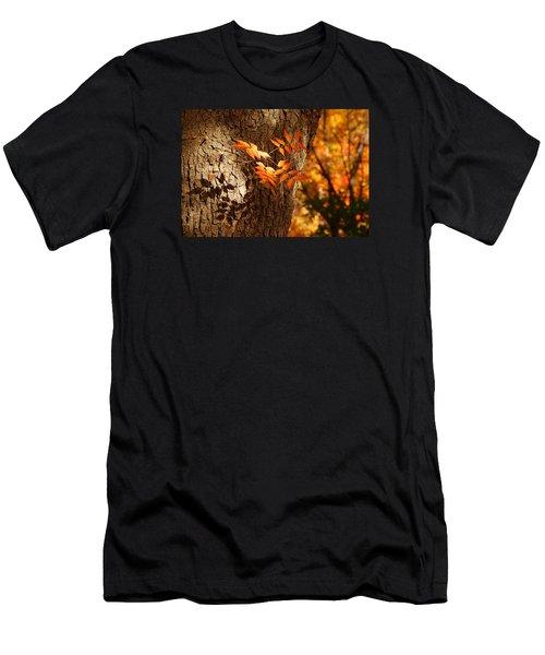 Fall Color Men's T-Shirt (Athletic Fit)