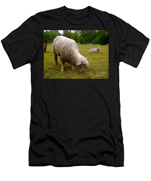 Sheep Begin A New Day Men's T-Shirt (Athletic Fit)