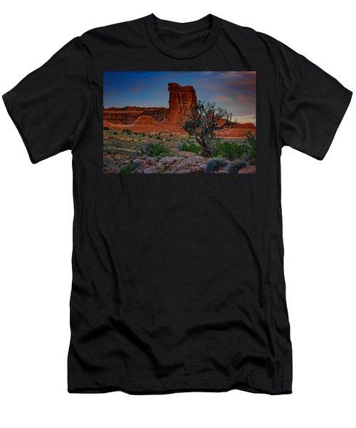 Sheep Rock Men's T-Shirt (Athletic Fit)