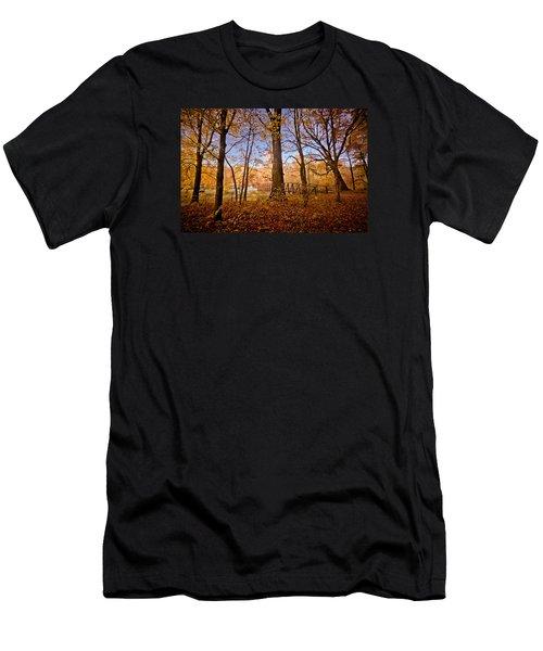 Shenango Paradise Men's T-Shirt (Athletic Fit)