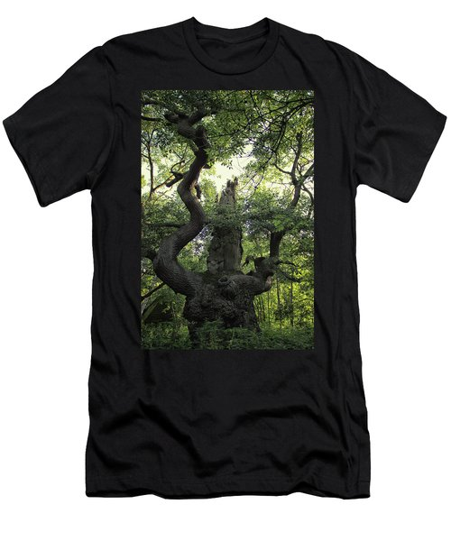 Sherwood Forest Men's T-Shirt (Athletic Fit)