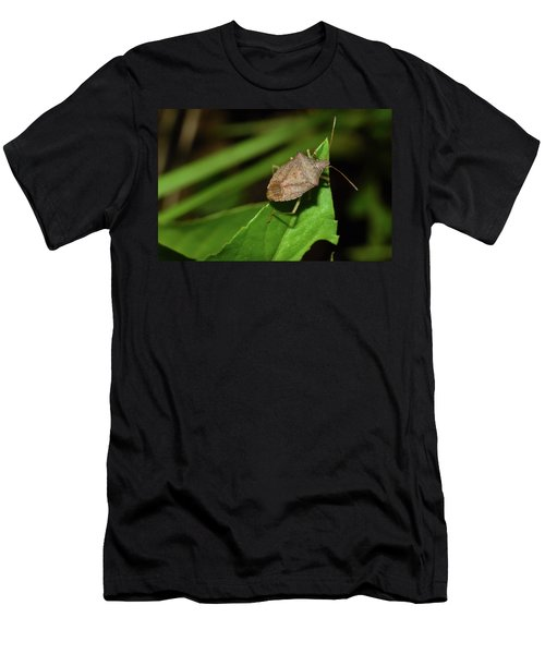 Shield Bug Men's T-Shirt (Athletic Fit)