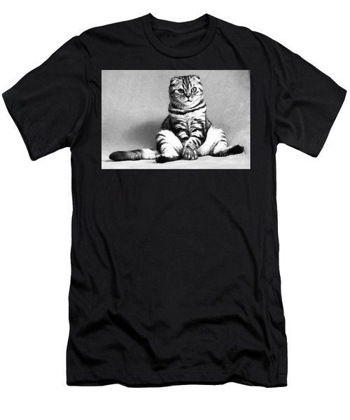 Shy Cat Men's T-Shirt (Athletic Fit)