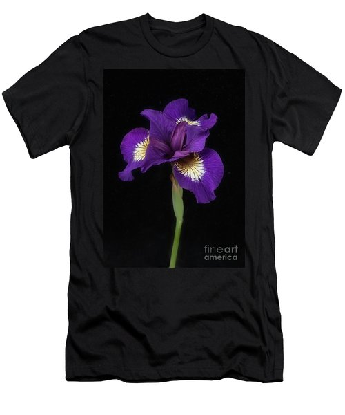 Siberian Iris Men's T-Shirt (Athletic Fit)