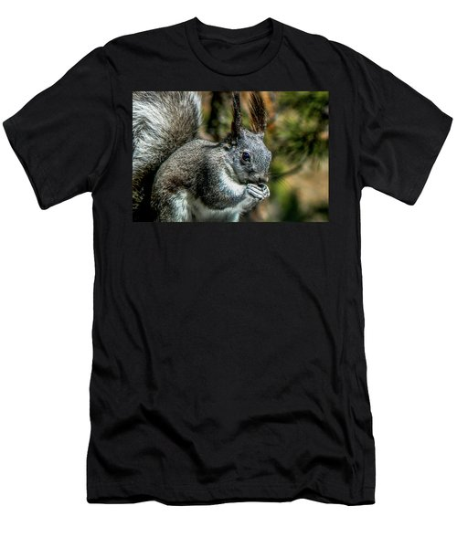 Silver Abert's Squirrel Close-up Men's T-Shirt (Athletic Fit)