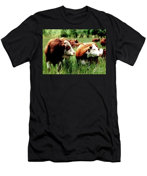 Simmental Bull And Hereford Cow Men's T-Shirt (Slim Fit) by Larry Campbell