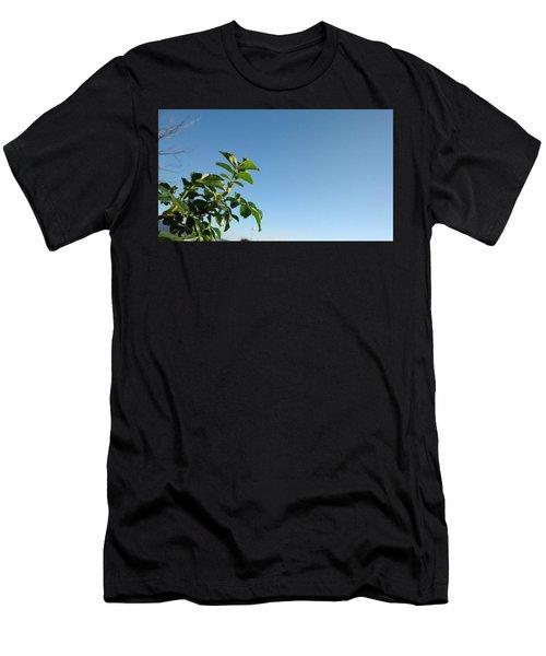 Simple Prosperity II Men's T-Shirt (Athletic Fit)