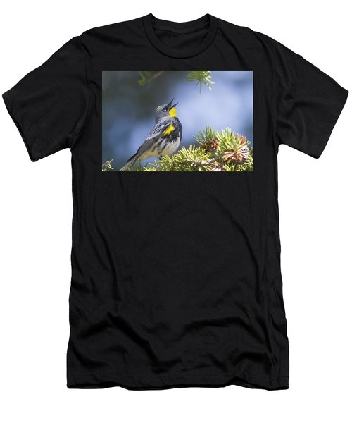 Singing Audubon's Warbler Men's T-Shirt (Athletic Fit)