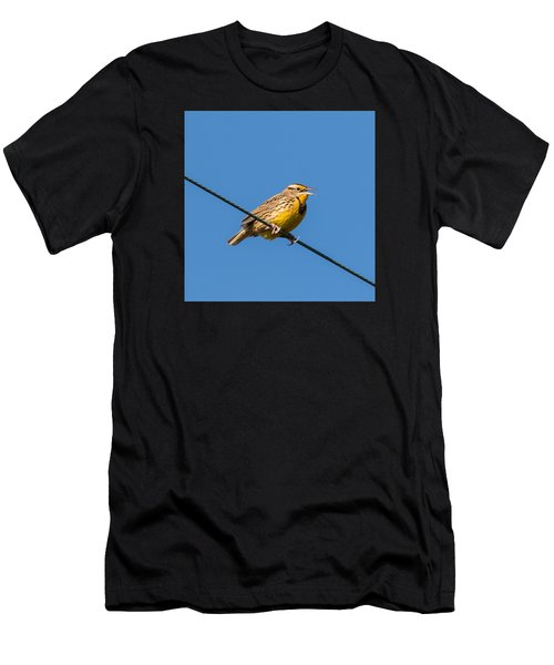 Singing On The Wire Men's T-Shirt (Athletic Fit)
