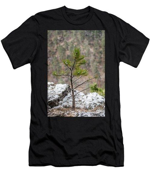 Single Snowy Pine Men's T-Shirt (Athletic Fit)