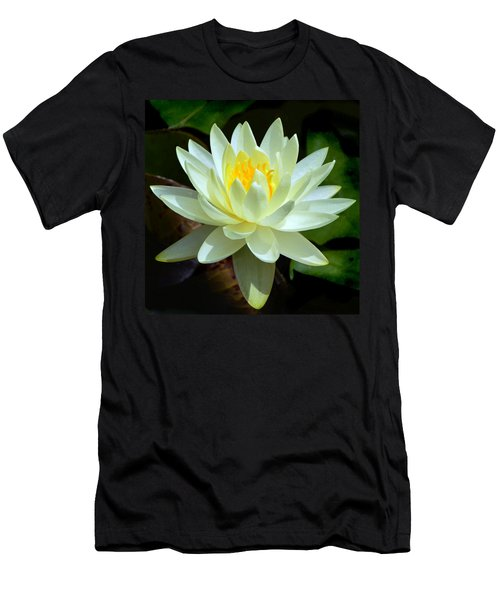 Single Yellow Water Lily Men's T-Shirt (Slim Fit) by Kathleen Stephens