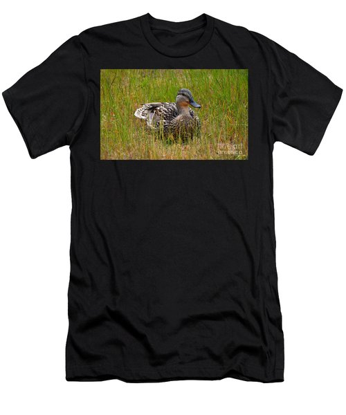 Sitting Duck Men's T-Shirt (Athletic Fit)