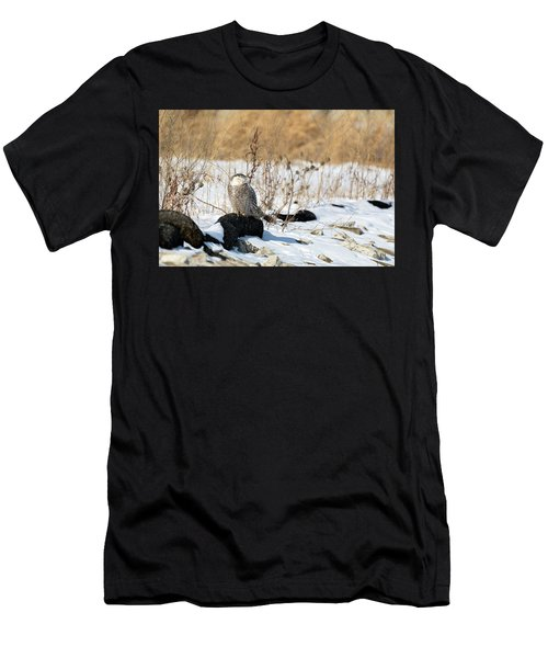 Sitting Snowy Men's T-Shirt (Athletic Fit)