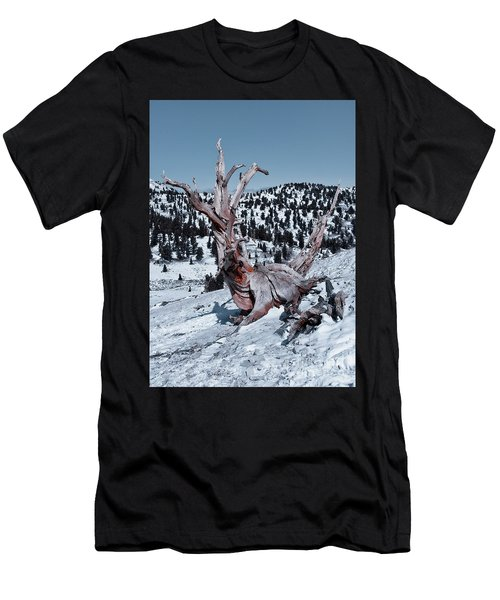 Men's T-Shirt (Athletic Fit) featuring the photograph Skating Pine by Mae Wertz