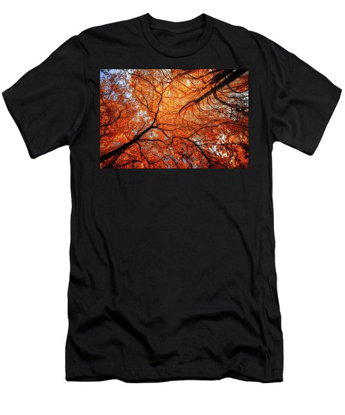Sky Roots In Forest Red Men's T-Shirt (Athletic Fit)