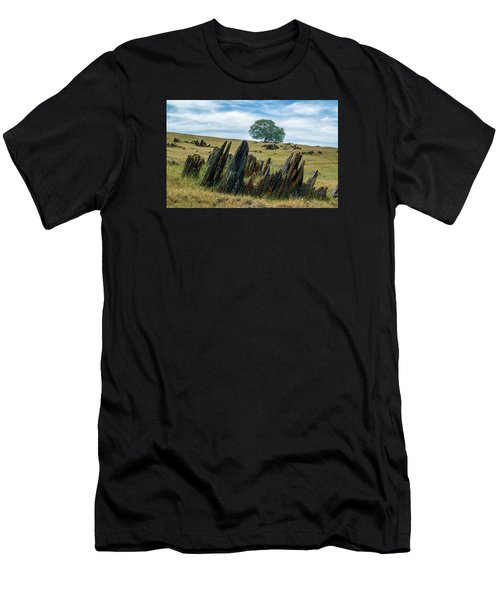 Slate Filled Meadow Men's T-Shirt (Athletic Fit)