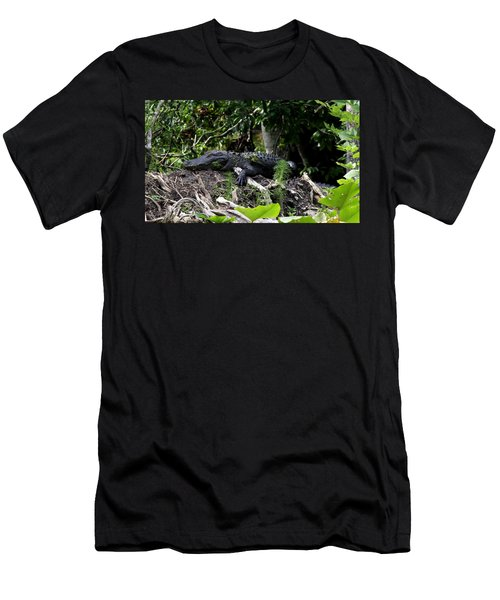 Sleeping Alligator Men's T-Shirt (Athletic Fit)