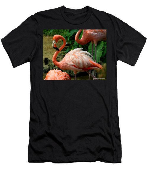 Sleeping Flamingo Men's T-Shirt (Athletic Fit)