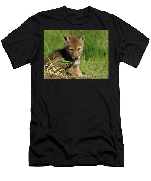 Men's T-Shirt (Athletic Fit) featuring the photograph Sleepy Pup by James Peterson