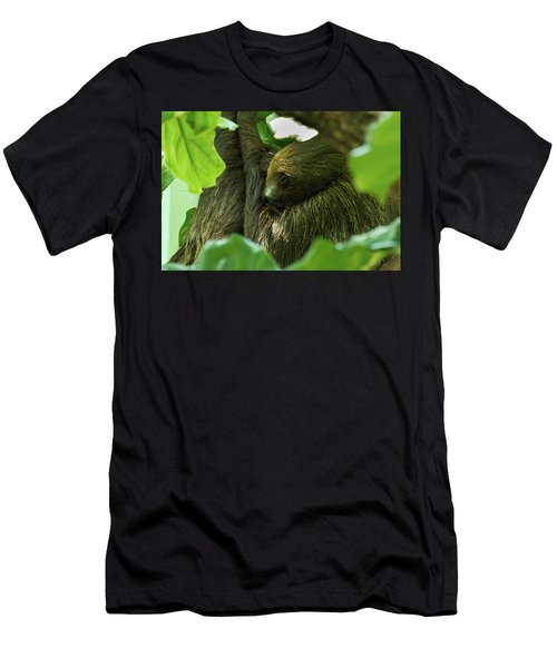 Sloth Sleeping Men's T-Shirt (Athletic Fit)