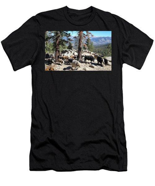Slow Is Fast Men's T-Shirt (Athletic Fit)
