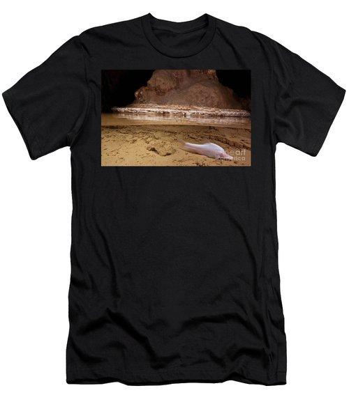 Small Eye Golden Line Barbel Men's T-Shirt (Athletic Fit)